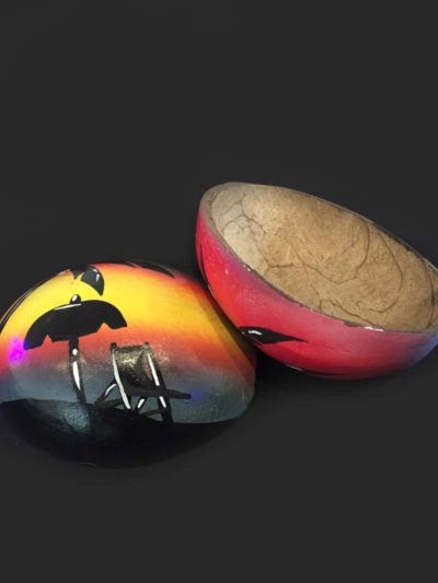 Painted Coconut Shells